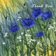 Blue Himalayan Poppies Thank You