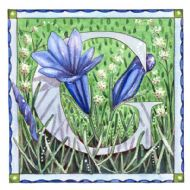 G is for Gentian