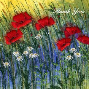 Red Field Poppies Thank You