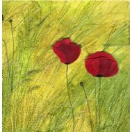 Two Field Poppies
